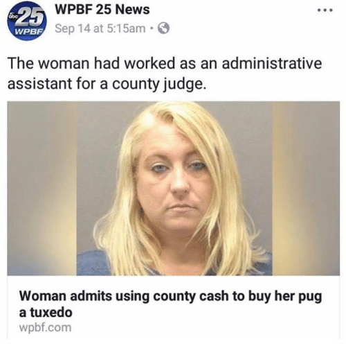 News, Her, and Com: -25  WPBF 25 News  Sep 14 at 5:15am.  WPBF  The woman had worked as an administrative  assistant for a county judge.  Woman admits using county cash to buy her pug  a tuxedo  wpbf.com