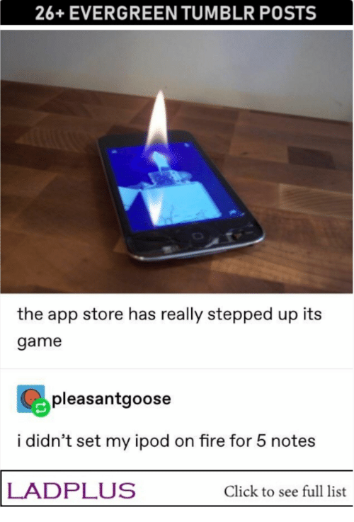 Ipod: 26+EVERGREEN TUMBLR POSTS  the app store has really stepped up its  game  pleasantgoose  i didn't set my ipod on fire for 5 notes  LADPLUS  Click to see full list