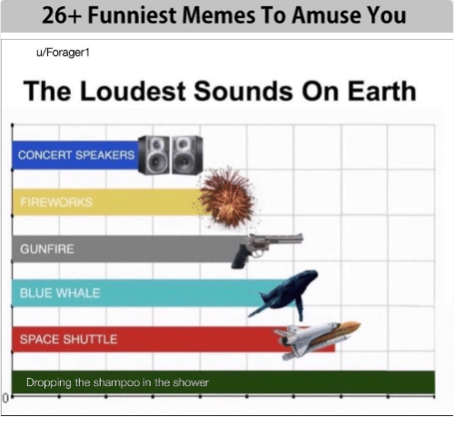 funniest memes: 26+ Funniest Memes To Amuse You  u/Forager1  The Loudest Sounds On Earth  CONCERT SPEAKERS  FIREWORKS  GUNFIRE  BLUE WHALE  SPACE SHUTTLE  Dropping the shampoo in the shower
