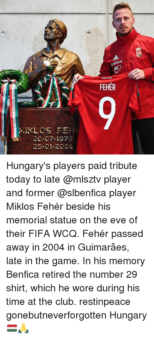 Memes, 🤖, and Eve: 2C-07-1979  25-01-2004  botpbank  MOL  FEHER Hungary's players paid tribute today to late @mlsztv player and former @slbenfica player Miklos Fehér beside his memorial statue on the eve of their FIFA WCQ. Fehér passed away in 2004 in Guimarães, late in the game. In his memory Benfica retired the number 29 shirt, which he wore during his time at the club. restinpeace gonebutneverforgotten Hungary 🇭🇺🙏