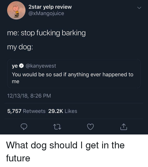 Yelp: 2star yelp review  @xMangojuice  me: stop fucking barking  my dog  ye @kanyewest  You would be so sad if anything ever happened to  me  12/13/18, 8:26 PM  5,757 Retweets 29.2K Likes What dog should I get in the future
