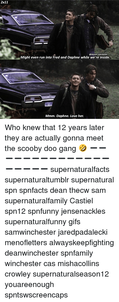 daphne: 2x11  @thesam.Winchester  Might even run into Fred and Daphne while we're inside.  Mmm. Daphne. Love her. Who knew that 12 years later they are actually gonna meet the scooby doo gang 🤣 ➖➖➖➖➖➖➖➖➖➖➖➖➖➖➖➖➖➖➖ supernaturalfacts supernaturaltumblr supernatural spn spnfacts dean thecw sam supernaturalfamily Castiel spn12 spnfunny jensenackles supernaturalfunny gifs samwinchester jaredpadalecki menofletters alwayskeepfighting deanwinchester spnfamily winchester cas mishacollins crowley supernaturalseason12 youareenough spntswscreencaps