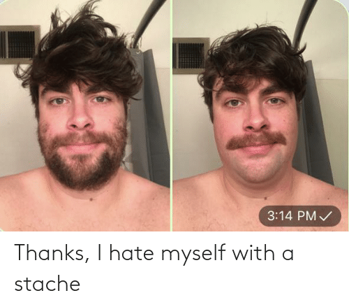 stache: 3:14 PM / Thanks, I hate myself with a stache