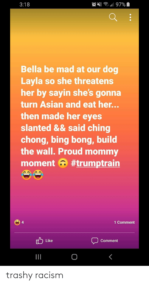 build-the-wall: 3:18  97%  Bella be mad at our dog  Layla so she threatens  her by sayin she's gonna  turn Asian and eat her...  then made her eyes  slanted && said ching  chong, bing bong, build  the wall. Proud mommy  moment 6 #trumptrain  1 Comment  לןיte  Comment trashy racism