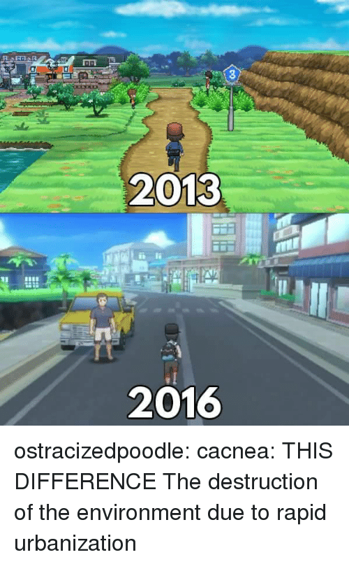 urbanization: 3  2013  2016 ostracizedpoodle: cacnea:  THIS DIFFERENCE  The destruction of the environment due to rapid urbanization