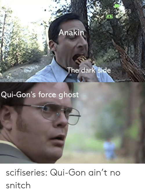 The Dark Side: 3:3-03  Anakin  The dark side  Qui-Gon's force ghost scifiseries:  Qui-Gon ain't no snitch
