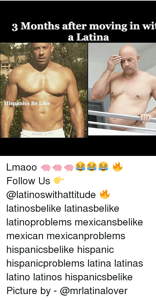 Be Like, Latinos, and Memes: 3 Months after moving in wit  a Latina  Hispanics Be Like  BARCA Lmaoo 🐖🐖🐖😂😂😂 🔥 Follow Us 👉 @latinoswithattitude 🔥 latinosbelike latinasbelike latinoproblems mexicansbelike mexican mexicanproblems hispanicsbelike hispanic hispanicproblems latina latinas latino latinos hispanicsbelike Picture by - @mrlatinalover