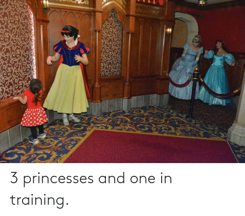 princesses: 3 princesses and one in training.