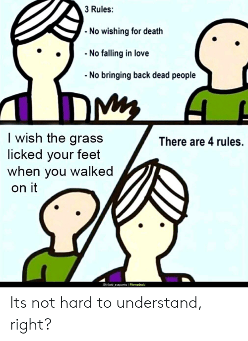 Memedroid: 3 Rules:  No wishing for death  No falling in love  No bringing back dead people  I wish the grass  licked your feet  you walked  There are 4 rules.  when  on it  Shitbob_asspants Memedroid Its not hard to understand, right?