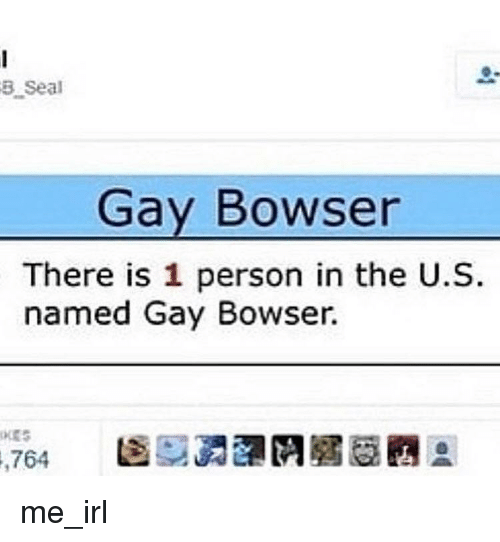 Bowser: 3 Seal  Gay Bowser  There is 1 person in the U.S  named Gay Bowser.  704  圇硬勇瀾們眉眉豳® me_irl