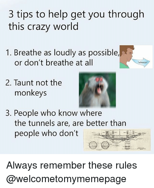 wheeze: 3 tips to help get you through  this crazy world  1. Breathe as loudly as possible,  or don't breathe at all  wheeze  2. Taunt not the  monkeys  3. People who know where  the tunnels are, are better than  people who don't Always remember these rules @welcometomymemepage
