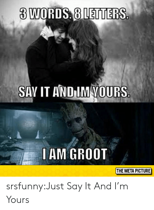 Vours: 3 WORDS, 8 LETTERS  SAV IT AND IM VOURS  IAM GROOT  THE META PICTURE srsfunny:Just Say It And I'm Yours