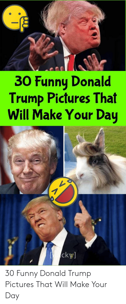 donald: 30 Funny Donald Trump Pictures That Will Make Your Day