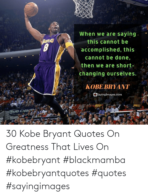 Kobe Bryant: 30 Kobe Bryant Quotes On Greatness That Lives On #kobebryant #blackmamba #kobebryantquotes #quotes #sayingimages