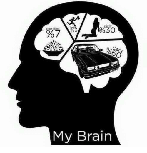 mechanic: %30  other things  %7  %60  My Brain