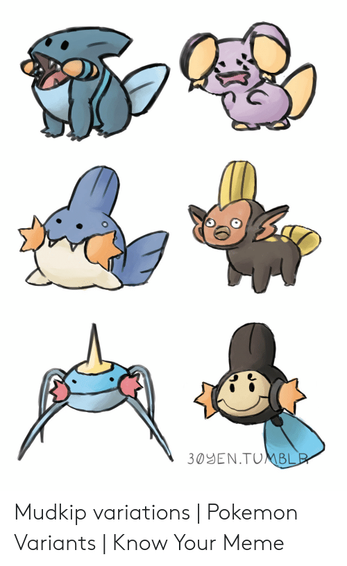 Know Your Meme Mudkip: 30YEN.TUNMBLE Mudkip variations | Pokemon Variants | Know Your Meme