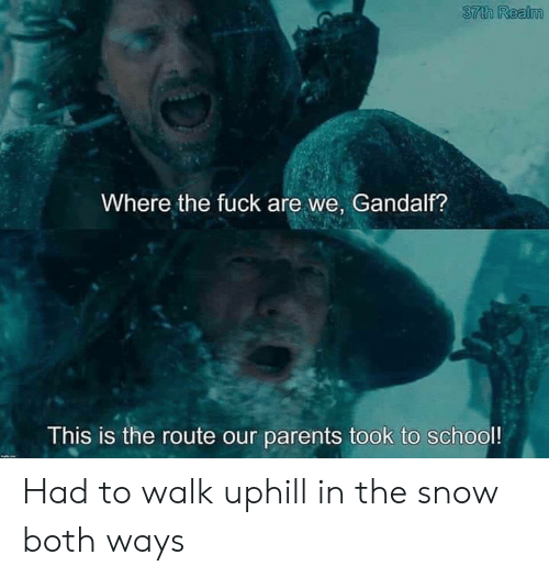 realm: 37th Realm  Where the fuckare we, Gandalf?  This is the route our parents took to school! Had to walk uphill in the snow both ways
