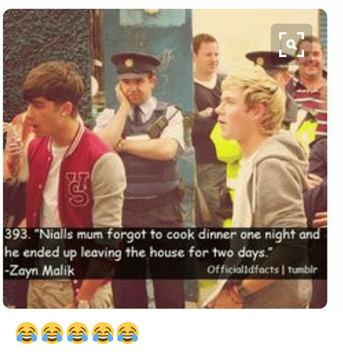 393 nialls mum forgot to cook dinner one night and 25838225 🔥 25 best memes about zayn malik and tumblr zayn malik and
