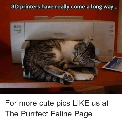 3d printers: 3D printers have really come a long way... For more cute pics LIKE us at The Purrfect Feline Page