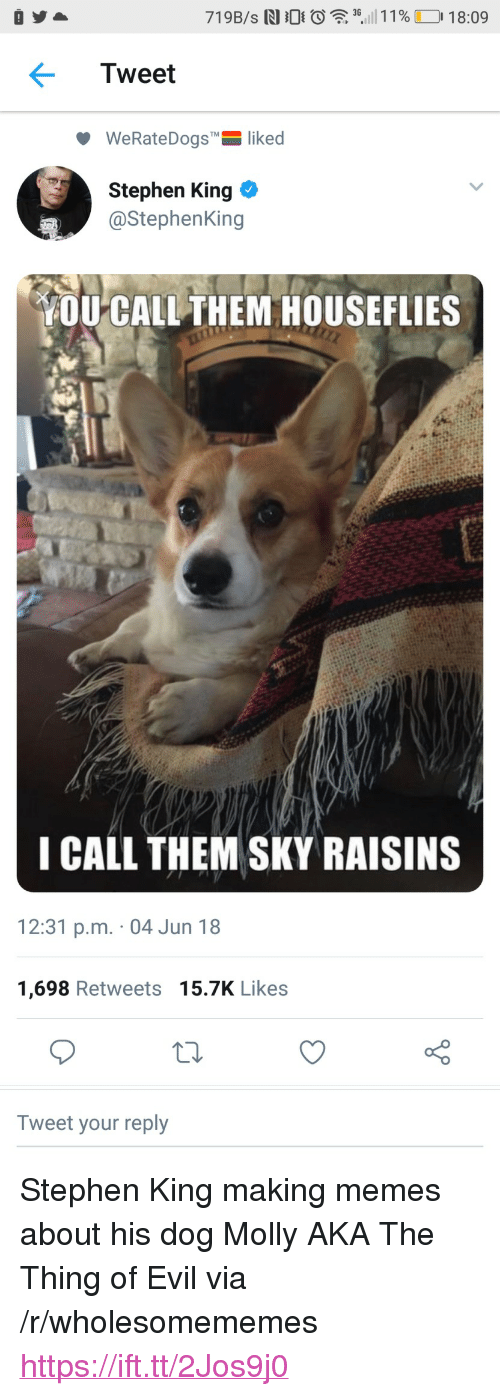 """Memes, Molly, and Stephen: 3G  Tweet  WeRateDogs""""-liked  Stephen King  @StephenKing  OU CALL THEM HOUSEFLIES  I CALL THEM SKY RAISINS  12:31 p.m. 04 Jun 18  1,698 Retweets 15.7K Likes  Tweet your reply <p>Stephen King making memes about his dog Molly AKA The Thing of Evil via /r/wholesomememes <a href=""""https://ift.tt/2Jos9j0"""">https://ift.tt/2Jos9j0</a></p>"""