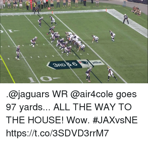 Memes, Wow, and House: 3RD B6 .@jaguars WR @air4cole goes 97 yards... ALL THE WAY TO THE HOUSE!  Wow. #JAXvsNE https://t.co/3SDVD3rrM7