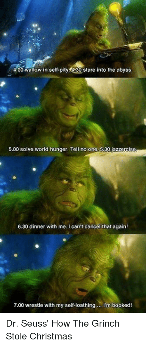 wallow in self pity: 4.00 wallow in self-pity 4:30 stare into the abyss.  5.00 solve world hunger. Tell no one. 5.30 jazzercise  6.30 dinner with me. I can't cancel that again!  7.00 wrestle with my self-loathing... I'm booked! Dr. Seuss' How The Grinch Stole Christmas