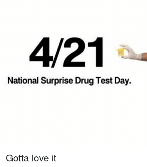 Love, Memes, and Test: 4/21  National Surprise Drug Test Day. Gotta love it