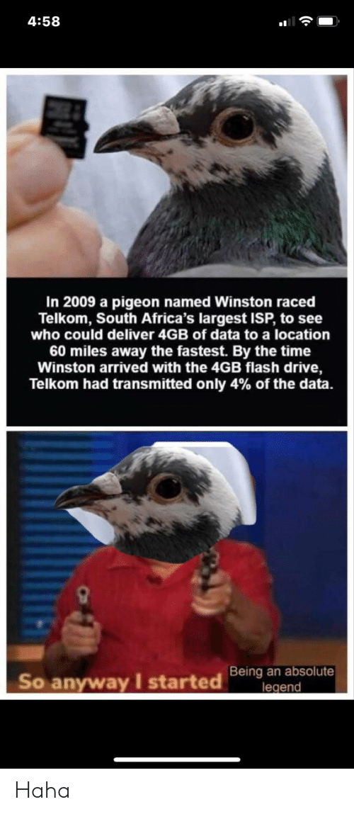Largest: 4:58  In 2009 a pigeon named Winston raced  Telkom, South Africa's largest ISP, to see  who could deliver 4GB of data to a location  60 miles away the fastest. By the time  Winston arrived with the 4GB flash drive,  Telkom had transmitted only 4% of the data.  Being an absolute  legend  So anyway I started Haha