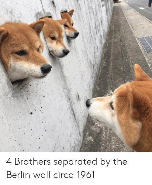 berlin: 4 Brothers separated by the Berlin wall circa 1961