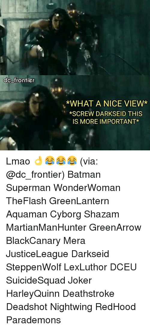 Batman, Joker, and Lmao: ,4  dc frontier  *WHAT A NICE VIEW*  *SCREW DARKSEID THIS  IS MORE IMPORTANT* Lmao 👌😂😂😂 (via: @dc_frontier) Batman Superman WonderWoman TheFlash GreenLantern Aquaman Cyborg Shazam MartianManHunter GreenArrow BlackCanary Mera JusticeLeague Darkseid SteppenWolf LexLuthor DCEU SuicideSquad Joker HarleyQuinn Deathstroke Deadshot Nightwing RedHood Parademons