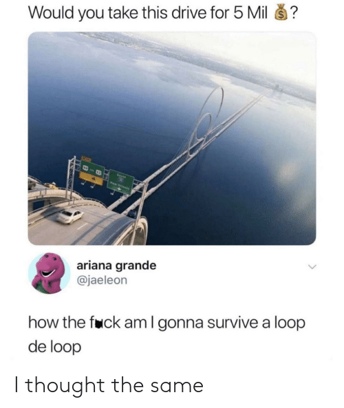 Ariana Grande, Drive, and Thought: $4  Would you take this drive for 5 Mil  Seeth  New Orteens  ariana grande  @jaeleon  how the fuck amI gonna survive a loop  de loop I thought the same