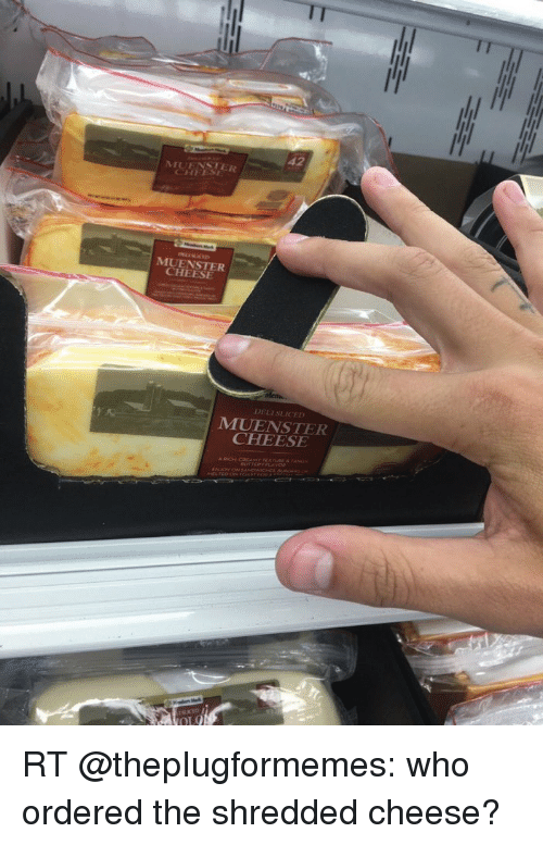 Memes, 🤖, and Cheese: 42  MUHNSTER  MUENSTER  CHEESE  M1UENSTER  CHEESE RT @thepIugformemes: who ordered the shredded cheese?