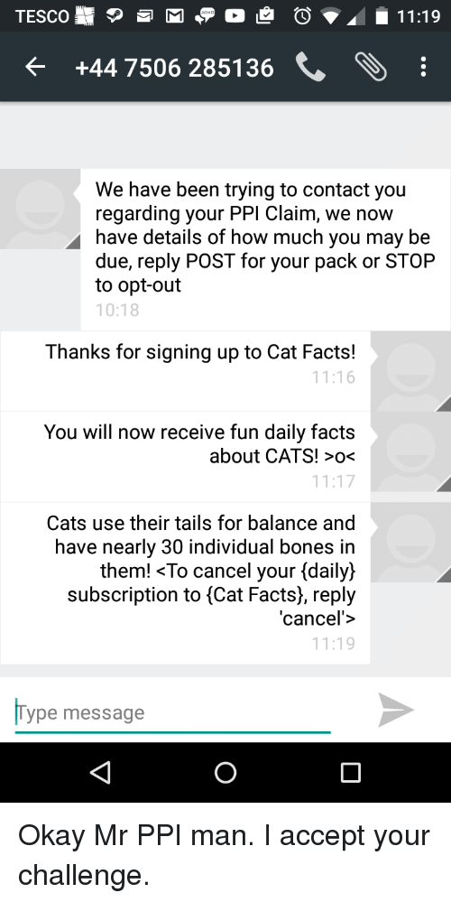 cat facts email represintation and general info