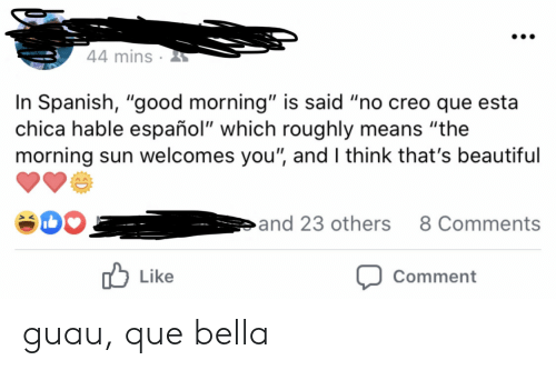 "Said No: 44 mins  In Spanish, ""good morning"" is said ""no creo que esta  chica hable español"" which roughly means ""the  morning sun welcomes you"", and I think that's beautiful  and 23 others  8 Comments  Like  Comment guau, que bella"