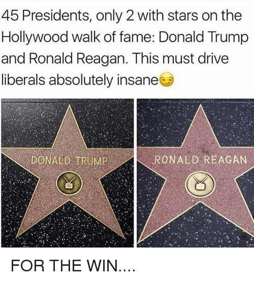 Donald Trump, Drive, and Presidents: 45 Presidents, only 2 with stars on the  Hollywood walk of fame: Donald Trump  and Ronald Reagan. This must drive  liberals absolutely insane  DONALD TRUMP  RONALD REAGAN FOR THE WIN....