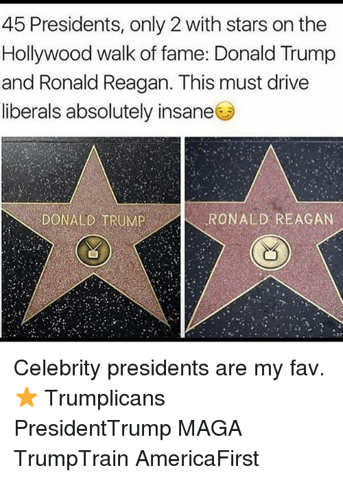 Donald Trump, Memes, and Drive: 45 Presidents, only 2 with stars on the  Hollywood walk of fame: Donald Trump  and Ronald Reagan. This must drive  and Ronald Reagan. This must dlrive  liberals absolutely insane  DONALD TRUMP  RONALD REAGAN Celebrity presidents are my fav. ⭐️ Trumplicans PresidentTrump MAGA TrumpTrain AmericaFirst