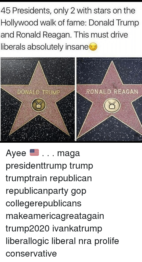Donald Trump, Memes, and Drive: 45 Presidents, only 2 with stars on the  Hollywood walk of fame: Donald Trump  and Ronald Reagan. This must drive  liberals absolutely insane  DONALD TRUMPRONALD REACAN Ayee 🇺🇸 . . . maga presidenttrump trump trumptrain republican republicanparty gop collegerepublicans makeamericagreatagain trump2020 ivankatrump liberallogic liberal nra prolife conservative