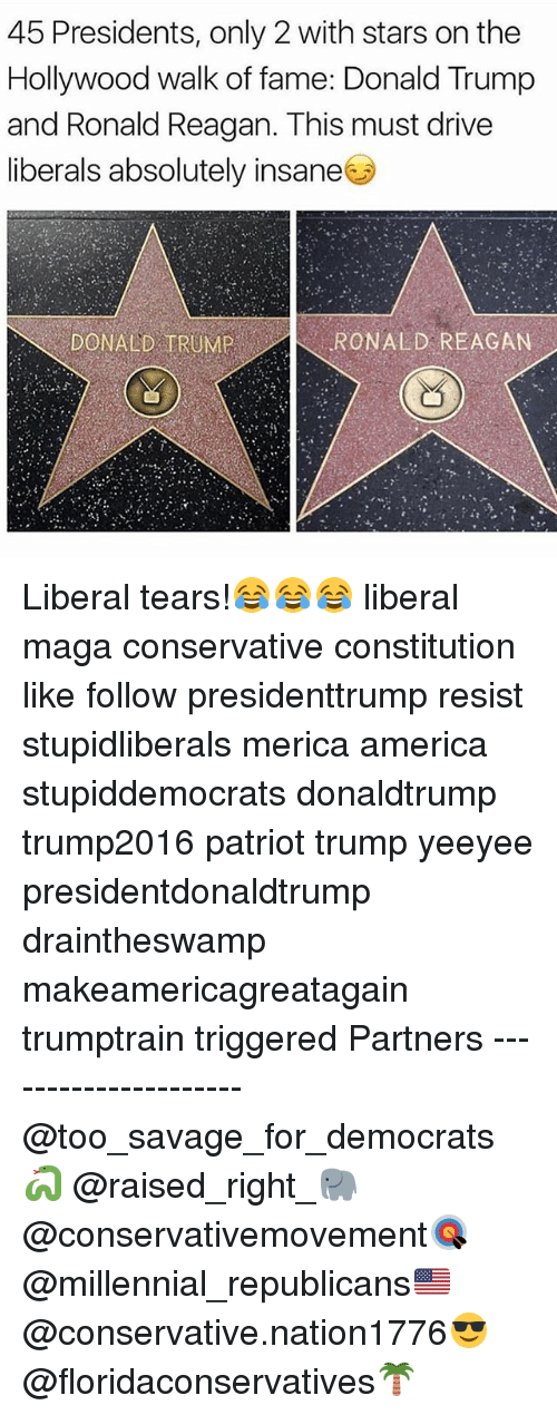 America, Donald Trump, and Memes: 45 Presidents, only 2 with stars on the  Hollywood walk of fame: Donald Trump  and Ronald Reagan. This must drive  liberals absolutely insane  RONALD REAGAN Liberal tears!😂😂😂 liberal maga conservative constitution like follow presidenttrump resist stupidliberals merica america stupiddemocrats donaldtrump trump2016 patriot trump yeeyee presidentdonaldtrump draintheswamp makeamericagreatagain trumptrain triggered Partners --------------------- @too_savage_for_democrats🐍 @raised_right_🐘 @conservativemovement🎯 @millennial_republicans🇺🇸 @conservative.nation1776😎 @floridaconservatives🌴