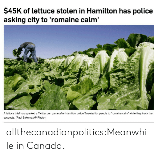 "meanwhile in canada: $45K of lettuce stolen in Hamilton has police  asking city to 'romaine calm'  A lettuce thief has sparked a Twitter pun game after Hamilton police Tweeted for people to ""romaine calm"" while they track the  suspects. (Paul Sakuma/AP Photo) allthecanadianpolitics:Meanwhile in Canada."