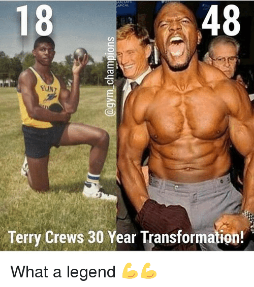 Memes, 🤖, and Legend: 48  18  Terry Crews 30 Year Transformation! What a legend 💪💪