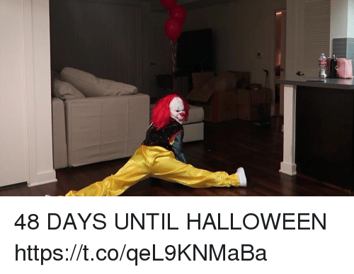 Funny, Halloween, and Days Until Halloween: 48 DAYS UNTIL HALLOWEEN https://t.co/qeL9KNMaBa