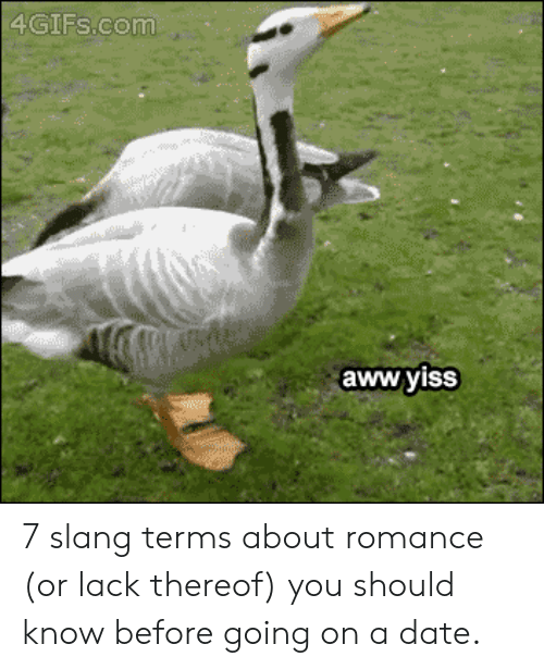 aww yiss: 4GIFS.com  aww yiss 7 slang terms about romance (or lack thereof) you should know before going on a date.