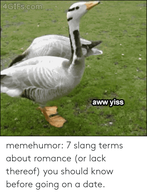 aww yiss: 4GIFs.com  aww yisS memehumor:  7 slang terms about romance (or lack thereof) you should know before going on a date.
