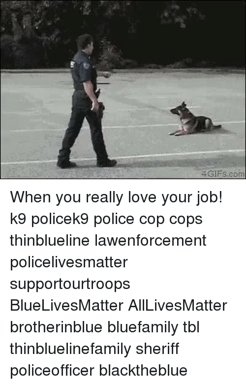 All Lives Matter, Love, and Memes: 4GIFS.com When you really love your job! k9 policek9 police cop cops thinblueline lawenforcement policelivesmatter supportourtroops BlueLivesMatter AllLivesMatter brotherinblue bluefamily tbl thinbluelinefamily sheriff policeofficer blacktheblue