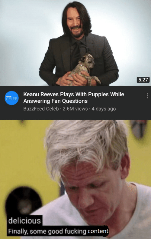 answering: 5:27  Keanu Reeves Plays With Puppies While  Answering Fan Questions  CELEB  BuzzFeed Celeb 2.6M views 4 days ago  delicious  Finally, some good fucking content