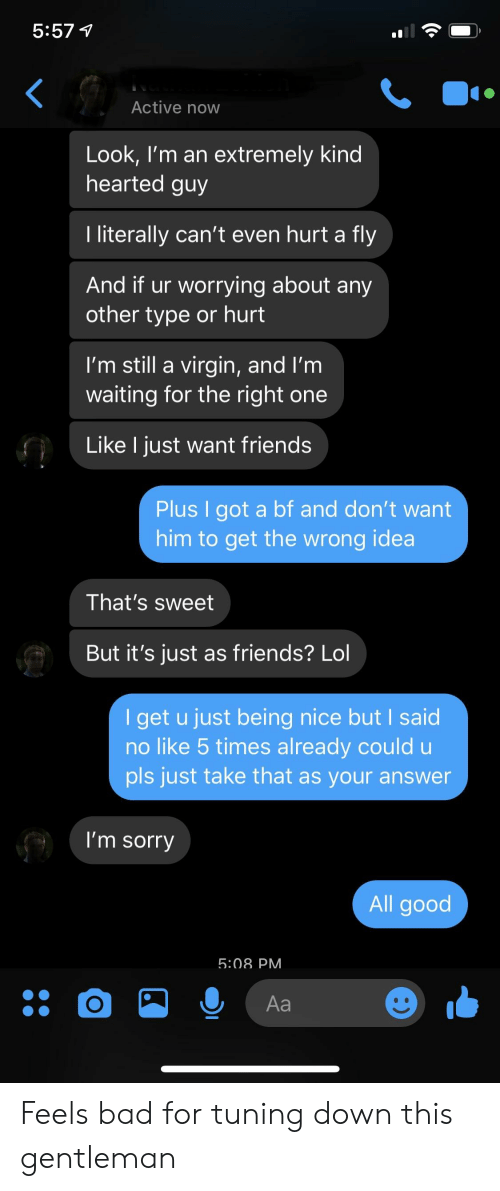 Literally Cant Even: 5:57 1  Active now  Look, I'm an extremely kind  hearted guy  I literally can't even hurt a fly  And if ur worrying about any  other type or hurt  I'm still a virgin, and I'm  waiting for the right one  Like l just want friends  Plus I got a bf and don't want  him to get the wrong idea  That's sweet  But it's just as friends? Lol  I get u just being nice but I said  no like 5 times already could u  pls just take that as your answer  I'm sorry  All good  5:08 PM Feels bad for tuning down this gentleman