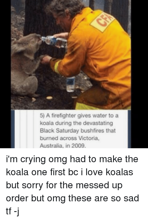 Crying, Love, and Memes: 5) A firefighter gives water to a  koala during the devastating  Black Saturday bushfires that  burned across Victoria.  Australia, in 2009. i'm crying omg had to make the koala one first bc i love koalas but sorry for the messed up order but omg these are so sad tf -j