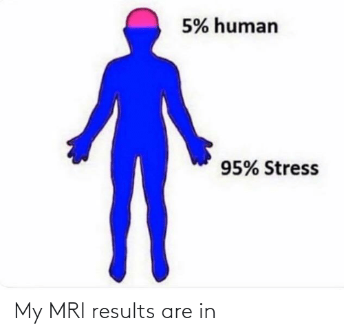 mri: 5% human  95% Stress My MRI results are in