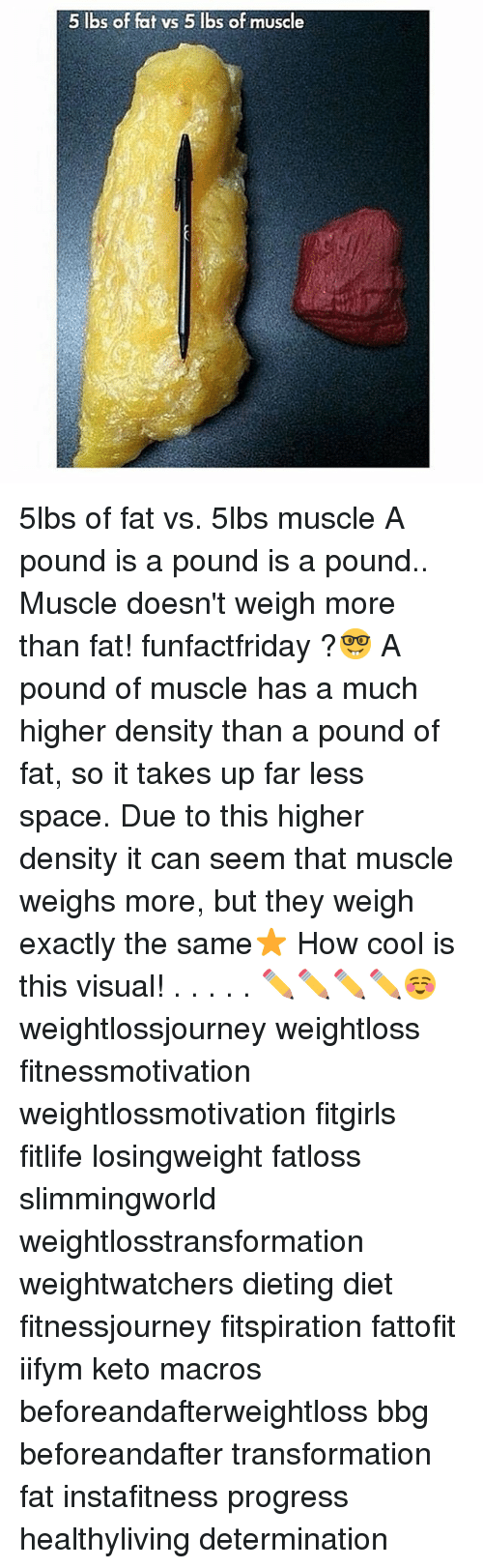 Keto: 5 lbs of fat vs 5 lbs of muscle 5lbs of fat vs. 5lbs muscle A pound is a pound is a pound.. Muscle doesn't weigh more than fat! funfactfriday ?🤓 A pound of muscle has a much higher density than a pound of fat, so it takes up far less space. Due to this higher density it can seem that muscle weighs more, but they weigh exactly the same⭐️ How cool is this visual! . . . . . ✏️✏️✏️✏️☺️ weightlossjourney weightloss fitnessmotivation weightlossmotivation fitgirls fitlife losingweight fatloss slimmingworld weightlosstransformation weightwatchers dieting diet fitnessjourney fitspiration fattofit iifym keto macros beforeandafterweightloss bbg beforeandafter transformation fat instafitness progress healthyliving determination