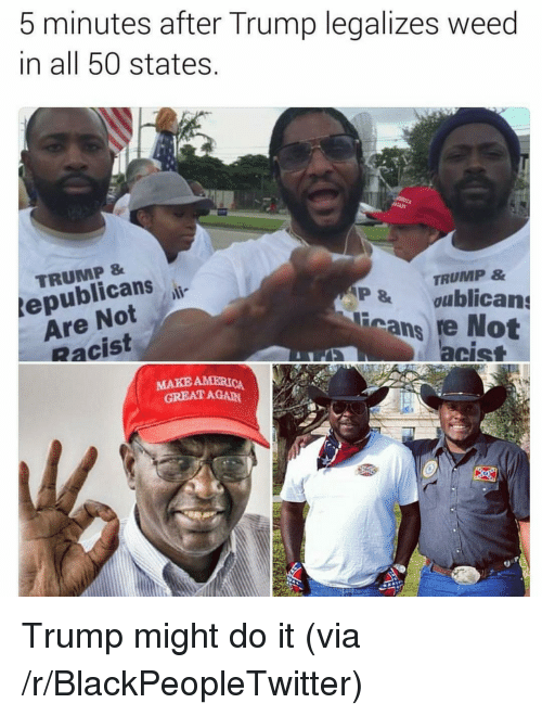 Racist Trump: 5 minutes after Trump legalizes weed  in all 50 states  TRUMP &  tepublicans  Are Notl-  Racist  TRUMP &  P&oublicans  cans re Not  acist  MAKE AMERICA  GREAT AGAN <p>Trump might do it (via /r/BlackPeopleTwitter)</p>